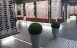 creation conception magasin optique arbois par nayla pallard design